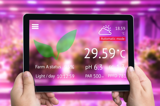 Smart agriculture futuristic indoor farming and Photoperiodism concept. Hand using tablet to monitoring artificial LED panel light source used in an experiment on vegetables vertical plant growth. (Zapp2photo - Stock.adobe.com)